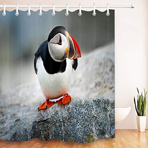 Papageientaucher,der auf dem Felsen steht,Wasserfest und Anti-Mehltau Duschvorhang mit Haken,150×180