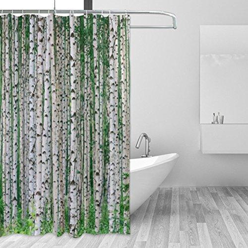 jstel Birke Baum Duschvorhang Schimmelresistent und Polyester-Wasserdicht-182,9x 182,9cm für Home Extra Lang Badezimmer Deko Dusche Bad Vorhänge Liner mit 12Haken