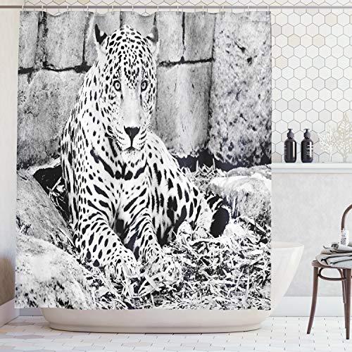 Abakuhaus Duschvorhang, Wildes Großes Katze Jaguar Thema mit Punkten auf Körper Pelz Druck Dschungel Tiger Leoparden, Wasser und Blickdicht aus Stoff mit 12 Ringen Schimmel Resistent, 175 X 200 cm